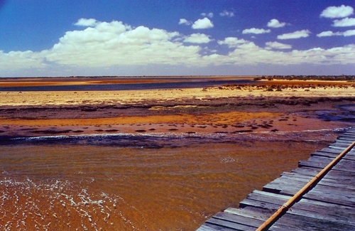 Photo of Carnarvon in the TripHappy travel guide