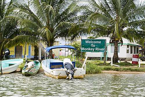 Photo of Monkey River in the TripHappy travel guide