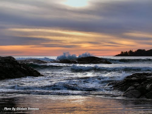 Photo of Tofino in the TripHappy travel guide