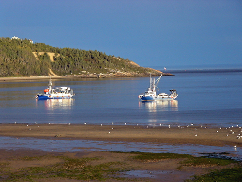 Photo of Tadoussac in the TripHappy travel guide