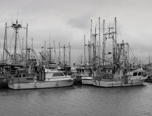 Featured medium photo of Parksville on TripHappy's travel guide