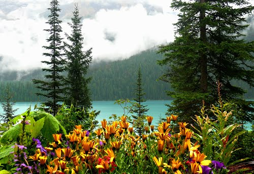 Featured medium photo of Iceline Trail on TripHappy's travel guide