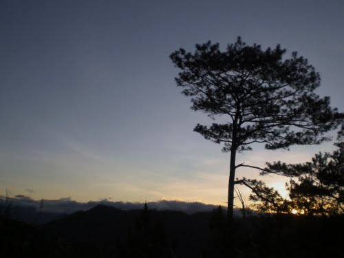 Featured medium photo of Baguio on TripHappy's travel guide