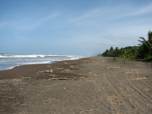 Featured medium photo of Tortuguero on TripHappy's travel guide