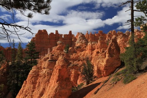 Photo of Bryce Canyon National Park in the TripHappy travel guide