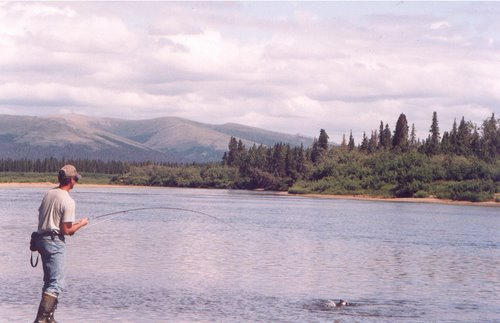 Photo of White Mountain in the TripHappy travel guide