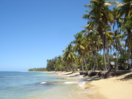 Photo of Las Terrenas in the TripHappy travel guide