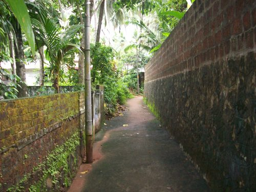 Featured medium photo of Kozhikode on TripHappy's travel guide