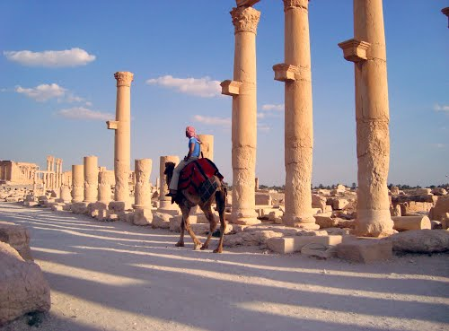 Photo of Palmyra in the TripHappy travel guide
