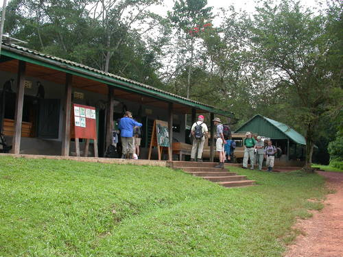 Featured medium photo of Kibale Forest National Park on TripHappy's travel guide