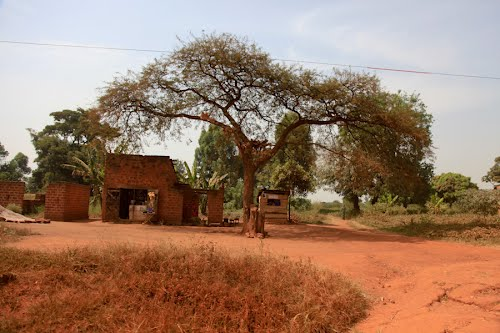 Photo of Masindi in the TripHappy travel guide