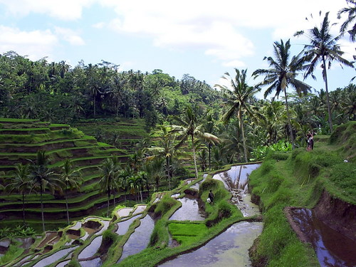 Photo of Gianyar in the TripHappy travel guide