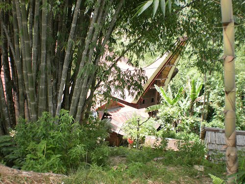 Photo of Tana Toraja Regency in the TripHappy travel guide