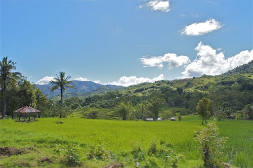Photo of Ende Regency in the TripHappy travel guide