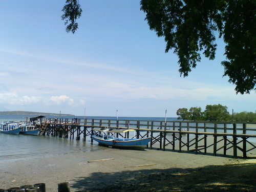 Featured medium photo of The Menjangan on TripHappy's travel guide