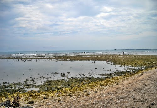 Featured medium photo of Jepara on TripHappy's travel guide