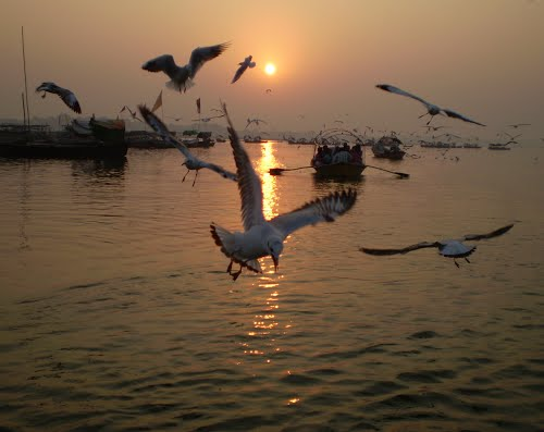 Photo of Allahabad in the TripHappy travel guide