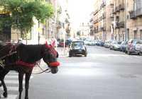 Photo of Borgo Vecchio in the TripHappy travel guide