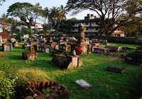 Photo of Fort Kochi in the TripHappy travel guide