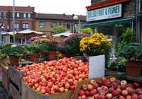 Photo of Little Italy in the TripHappy travel guide