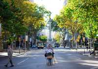 Photo of Montevideo Centro in the TripHappy travel guide