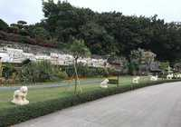 Photo of Shenzhen Overseas Chinese Town in the TripHappy travel guide