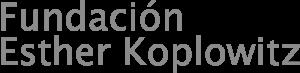 Fundación Esther Koplowitz Website