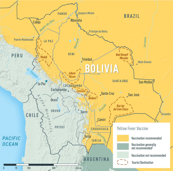 Yellow Fever Map, Bolivia, Yellow Fever Vaccine at Fleet Street Clinic, London