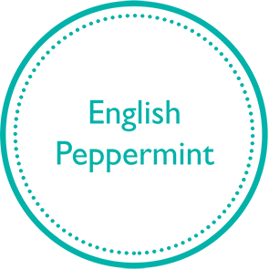 English-Peppermint-icon1