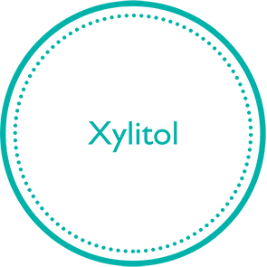 XYLITOL-icon-ingredients1