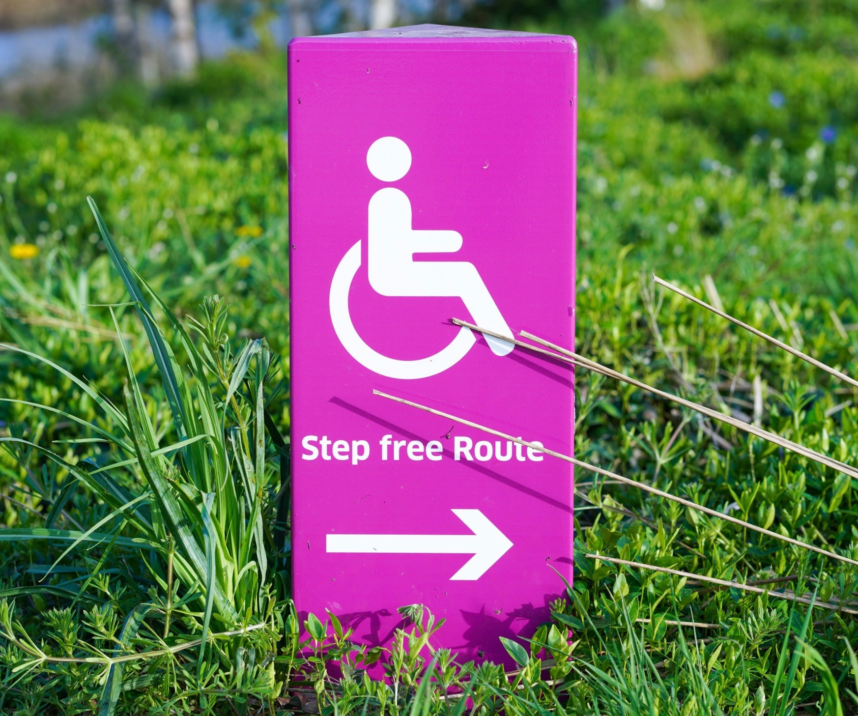 Disabled travelers: Blow past your limits
