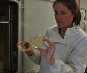 Lir Analytical partner with Athlone Bioscience Research Institute