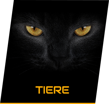 category Tiere