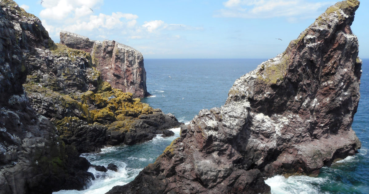 St Abb's Head | National Trust for Scotland
