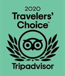 2020 Travellers' Choice award from Tripadvisor, featuring an owl in a circle with stylised feathery wings out to the side.