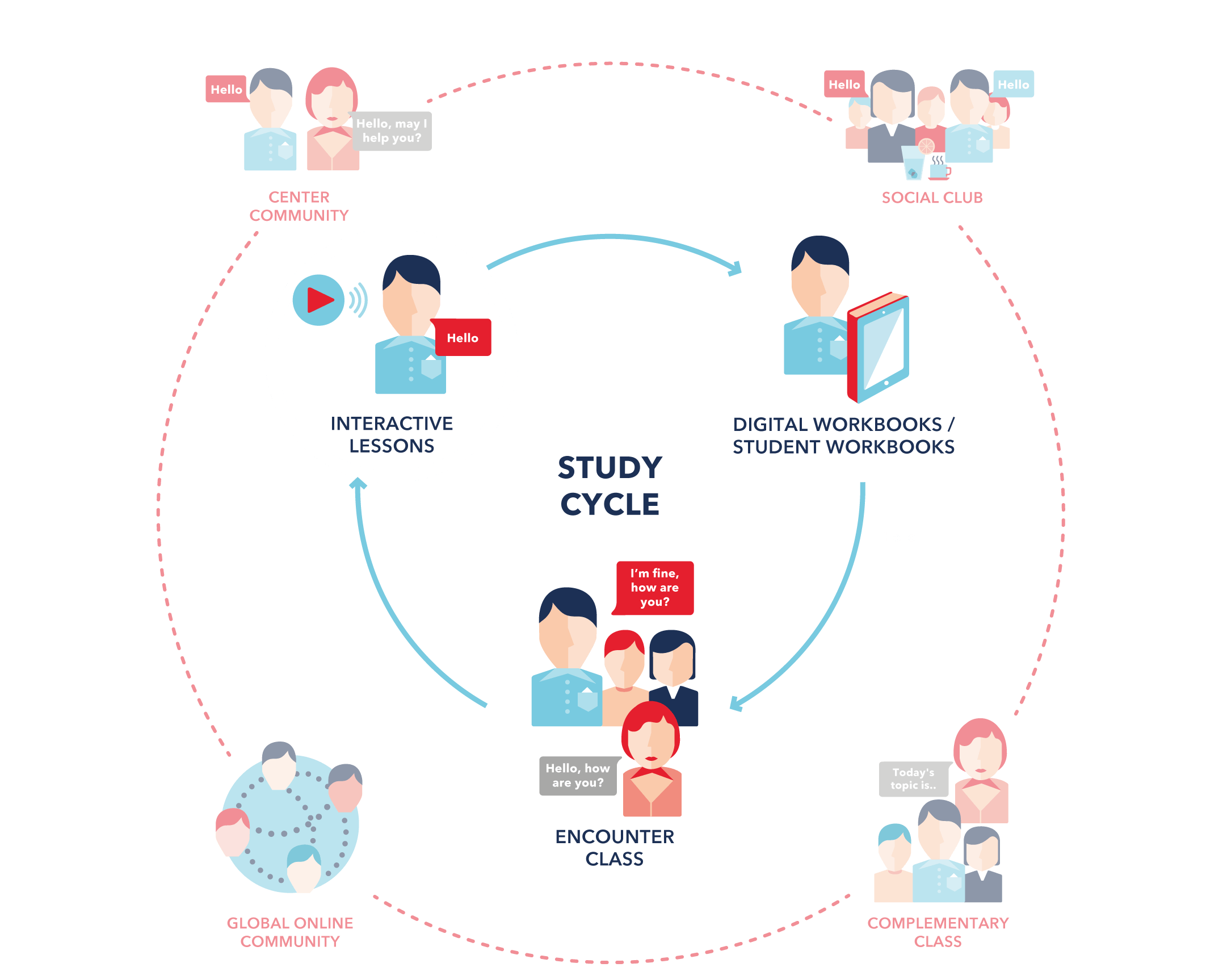 Study Cycle
