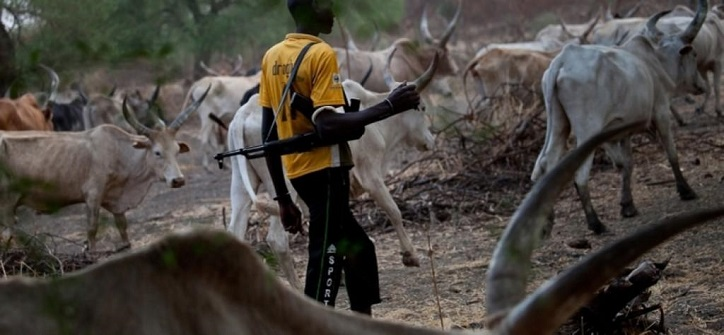 notorious rustlers herdsmen attacks