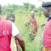 cannabis plantation NDLEA officials