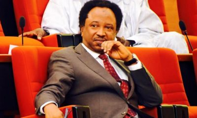 Coronavirus: Italian with virus has no face, name, Shehu Sani mocks FG