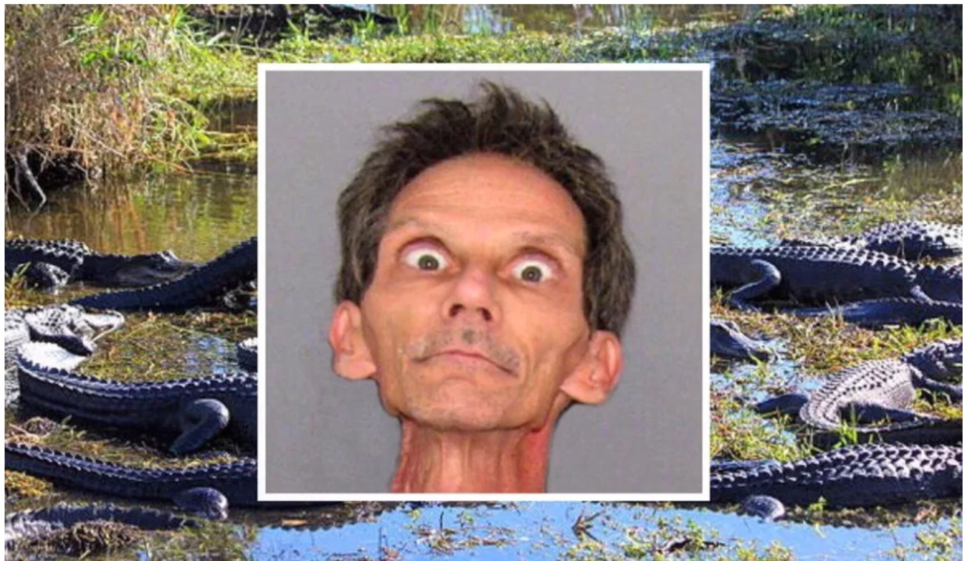 Man rapes alligators