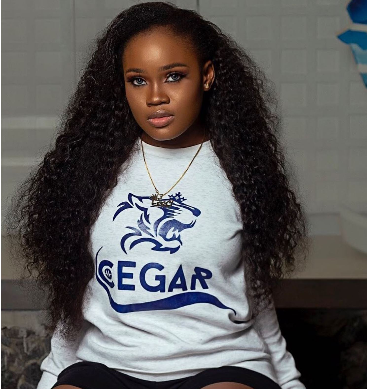 Image result for CEE C