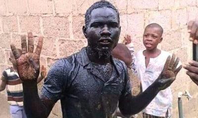 Buhari supporter