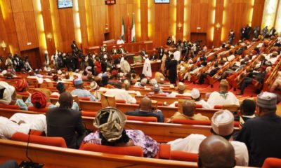Senate ministerial nominees