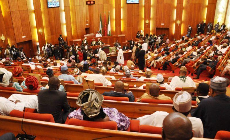 Nigerian Senate senator nude