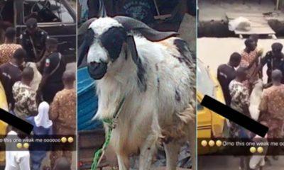 Lagos police goat