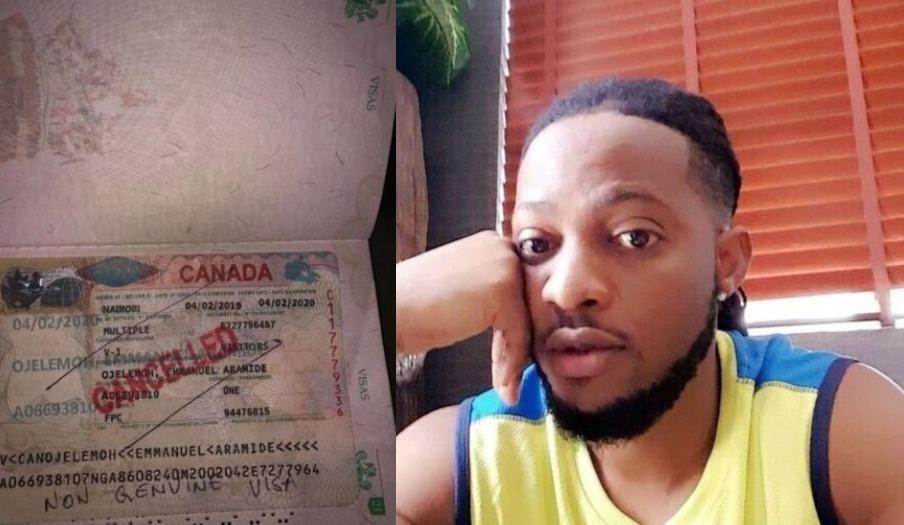 Fake visa