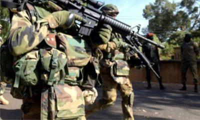 Operation Hadarin Daji in Zamfara