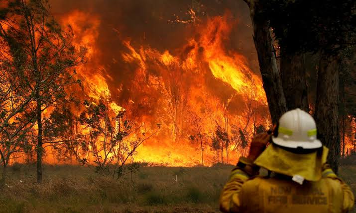 China: Forest fire kills 18 firefighters