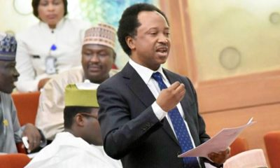 Shehu Sani reacts as Ganduje removes Emir Sanusi from office