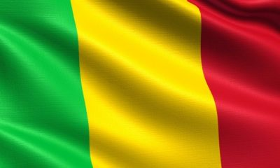 Mali holds election despite coronavirus, Insurgency